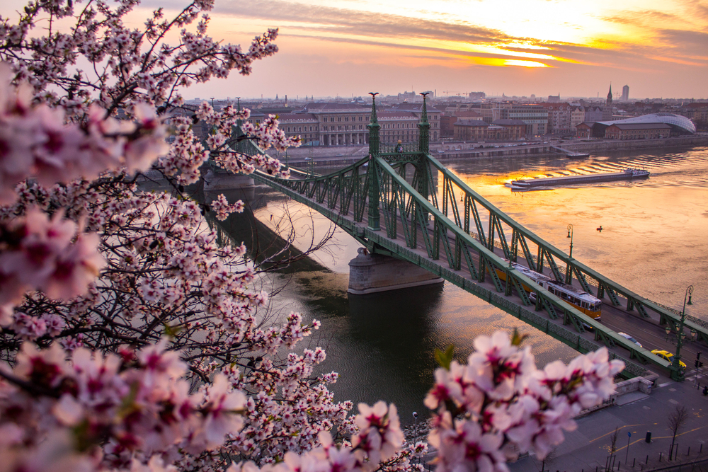 Budapest in blossom